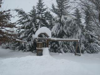 Winter 2010 001